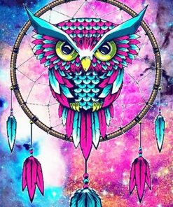 Colorful owl dream catcher adult paint by numbers