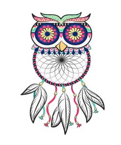 Dream catcher Owl adult paint by numbers