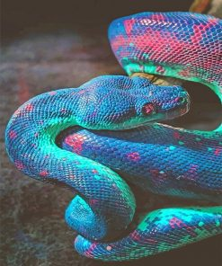 Rainbow Shimmering snake adult paint by numbers