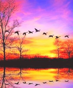 Waterfowl sunset adult paint by numbers