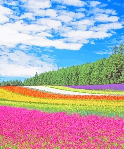 Hokkaido Garden paint by number