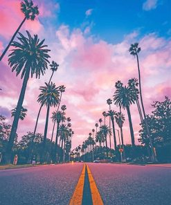 Los Angeles California Sunset paint by number