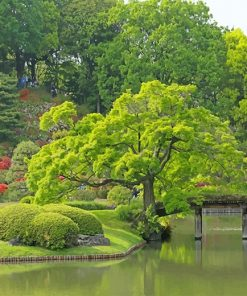 Rikugien Garden Tokyo paint by number