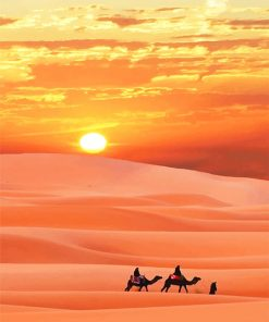 Sahara Desert paint by number