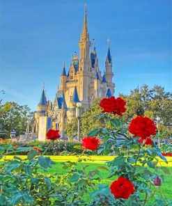 Cinderella Castle adult paint by numbers