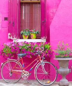 Cute Pink Wall Bike And Flowers paint By Numbers