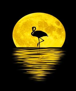 Flamingo Moon Silhouette Paint By Numbers