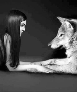 Girl with her wolf best friend adult paint by numbers