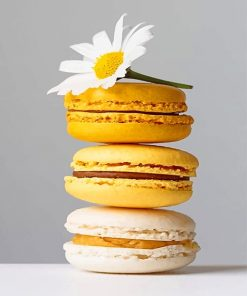 Yellow Macarons adult paint by numbers