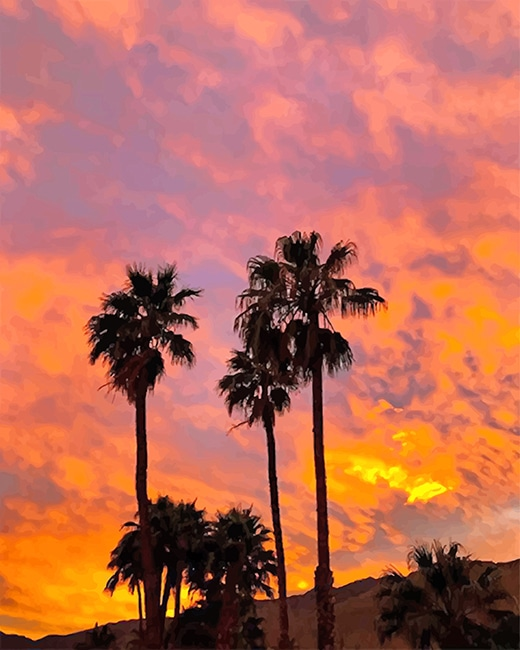Aesthetic Sky Palm Spring paint by number