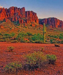 Arizona Desert Paint By Numbers