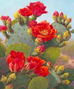 Beautiful Cactus Red Flowers Paint By Numbers