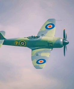 Spitfire paint by number