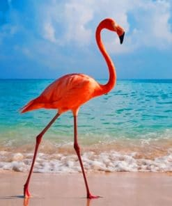 Flamingo In The Beach paint by numbers