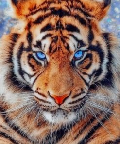 Tiger With Blue Eyes paint by numbers