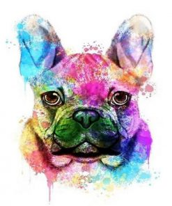 French Bulldog Colorful