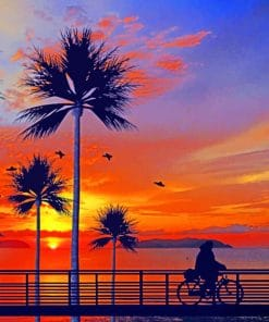 California Sunset Paint By Numbers