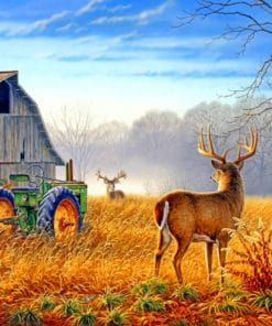 Country Scenes Paint By Numbers