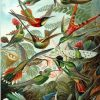 A flock of birds Paint by numbers
