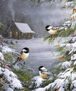 Winter Bird Paint by number