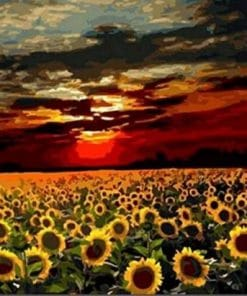 Sunflower Field Paint By Numbers