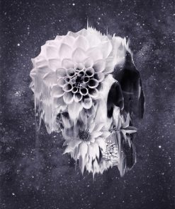 Decay Skull piant by numbers