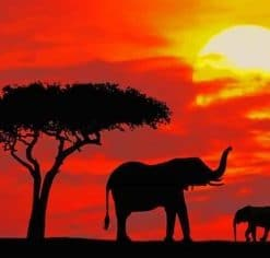 Elephants Silhouette paint by numbers