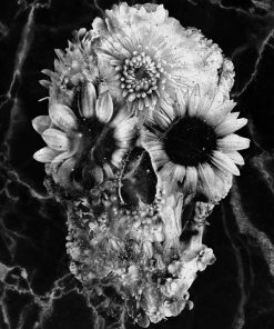 Floral Skull Marble Paint by numbers