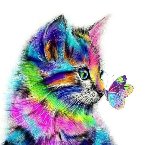 Colored Cat And Butterfly paint by numbers