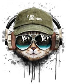 Cat Listening To Music paint by numbers