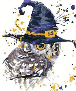 magical owl Paint by numbers
