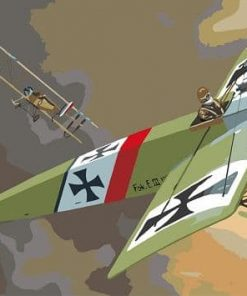 Nazi Airplane paint by numbers