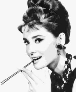 Charming Audrey Hepburn Paint By Numbers
