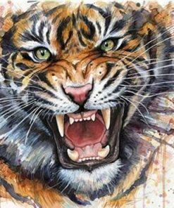 Splatter Tiger paint by numbers