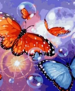 Butterfly Bubbles paint by numbers