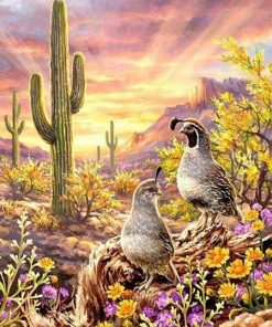 Birds in Desert paint by numbers