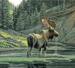 Moose River paint by number