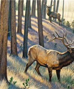 Elk In Woods paint by numbers
