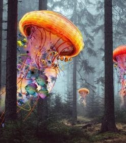 Jellyfish In The woods paint by numbers