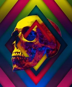 Lifeful Skull paint by numbers