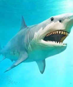 Megalodon Shark paint by numbers