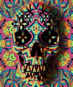 Geometric Skull paint by numbers