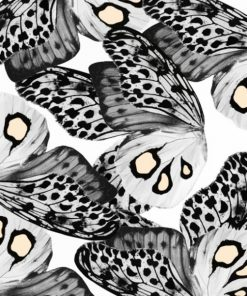Black And White Butterflies paint by numbers