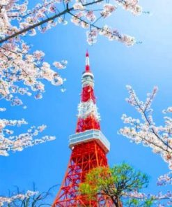 Tokyo Tower Paint by numbers