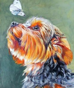 Yorkie And Butterfly Paint by numbers