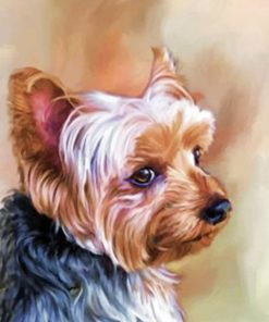 Yorkie Portrait Paint by numbers
