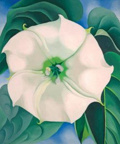 Georgia O Keeffe White Flower Paint by numbers