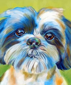 Shih Tzu Pet Paint by numbers