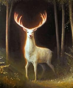 White Stag paint by numbers