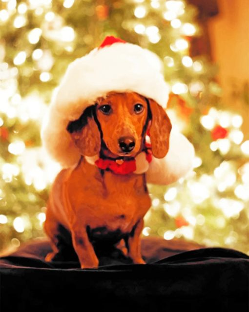 Christmas Dachshund Paint by numbers